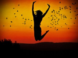 felicidade2