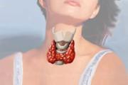 glandulas-da-tiroide